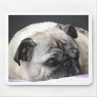 Pug pug - Photography: Jean Louis Glineur Mouse Pad