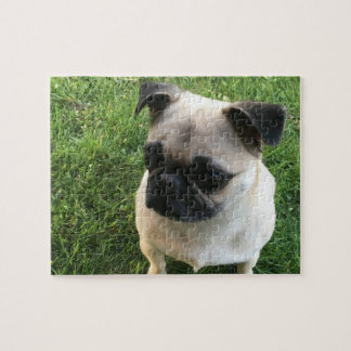 Pug Pup Jigsaw Puzzle