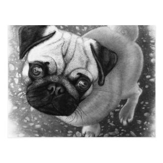 Pug Puppy Dog Art Postcard