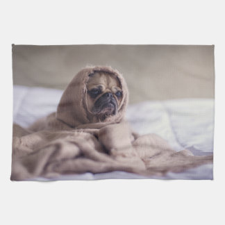 Pug puppy Dog Cuddling in a warm towel Blanket