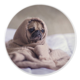 Pug puppy Dog Cuddling in a warm towel Blanket Ceramic Knob