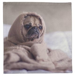Pug puppy Dog Cuddling in a warm towel Blanket Napkin