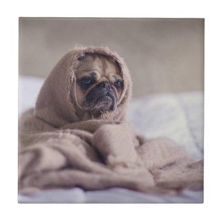Pug puppy Dog Cuddling in a warm towel Blanket Tile