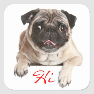 Pug Puppy Dog Hello Greeting Stickers