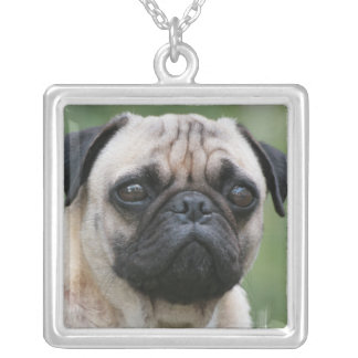 Pug Puppy Dog Sterling Silver Necklace