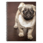 Pug Puppy Notebook