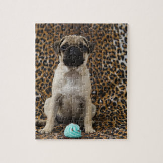 Pug puppy sitting against animal print 2 jigsaw puzzle