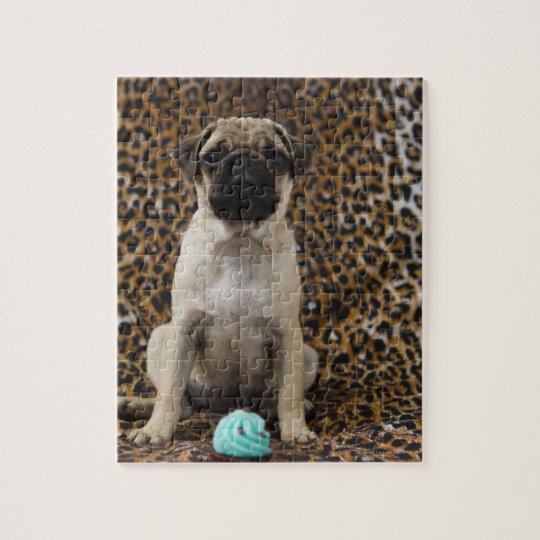Pug puppy sitting against animal print 2 jigsaw puzzle