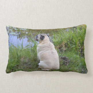 Pug Sitting By A Pond Throw Pillow