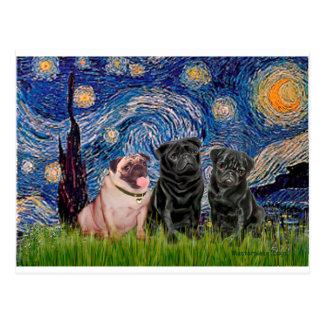 Pug Trio (1F,2B) - Starry Night Postcard