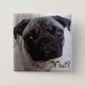Pug What? 2 Inch Square Button
