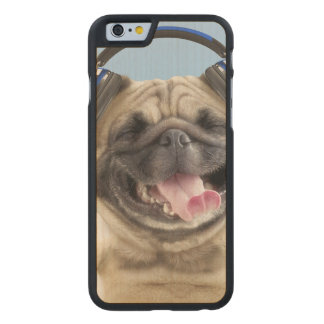 Pug with headphones,pug ,pet carved maple iPhone 6 case