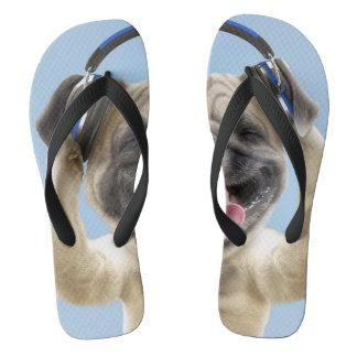 Pug with headphones,pug ,pet flip flops