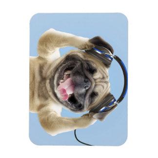 Pug with headphones,pug ,pet magnet