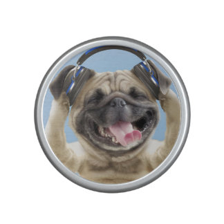 Pug with headphones,pug ,pet speaker