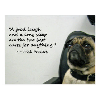 Pug with Irish Proverb Postcard