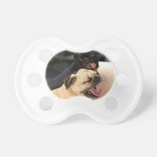 Pug Yawn Pacifier