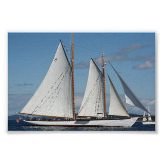 Puget Sound Sailboat Poster