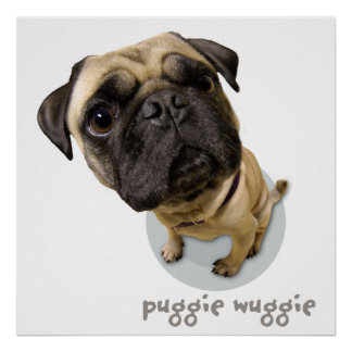 Puggie Wuggie Poster