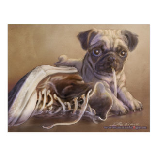 Puggy Chewing Shoelace Postcard