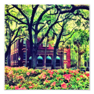 Pulaski Square, Savannah Art Photo