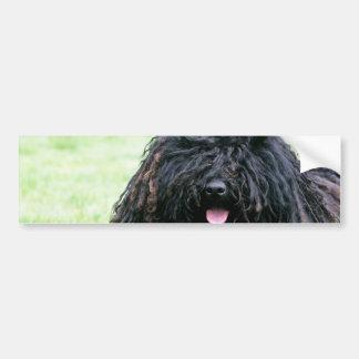 Puli Dog  Bumper Sticker