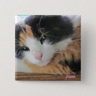 Puma Cute Calico Cat 2 Inch Square Button