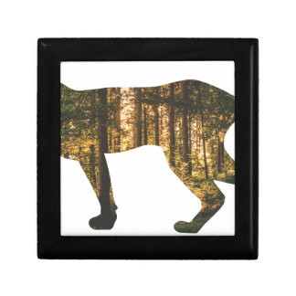 puma-in-forest gift box