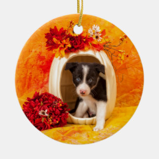 Pumkin Puppy Ceramic Ornament