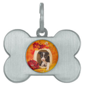 Pumkin Puppy Pet Name Tag