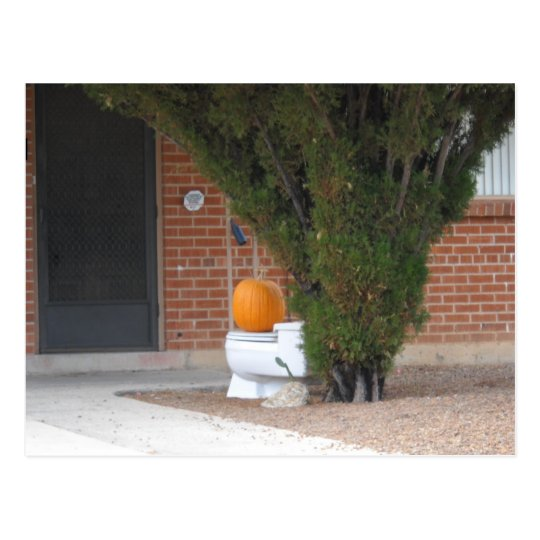 pumkin sitting on a toilet postcard