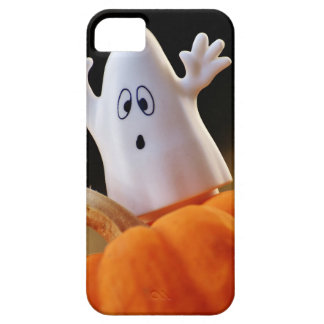 Pumpkin and ghost - funny ghost - orange pumpkin iPhone 5 cases