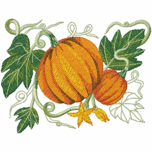 Pumpkin Botanical Fruit and Floral