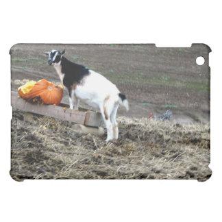 Pumpkin Eater iPad Mini Cases