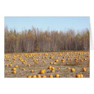 Pumpkin field notecard