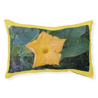 PUMPKIN FLOWERS PET BED