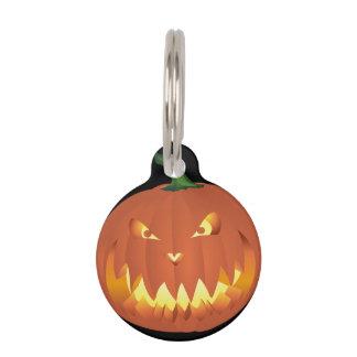 Pumpkin for Halloween... Pet Name Tag