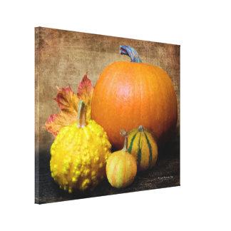Pumpkin Gourds Still Life Canvas Print