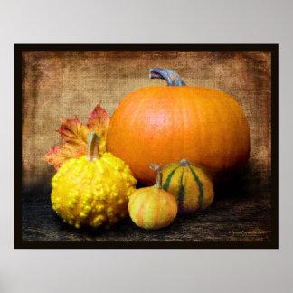 Pumpkin Gourds Still Life Poster