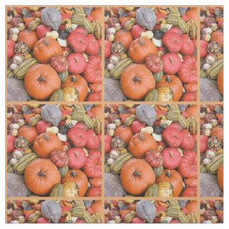 Pumpkin Harvest R01.7 Fabric