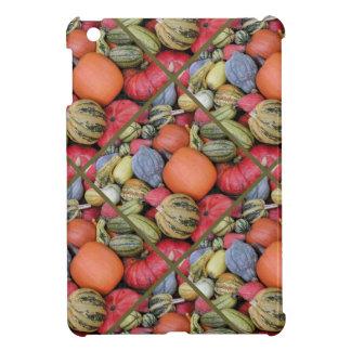 Pumpkin Harvest R02.1.2 iPad Mini Cases
