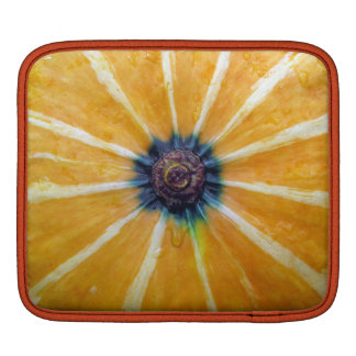 pumpkin iPad sleeve