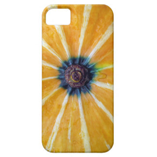 pumpkin iPhone 5 case