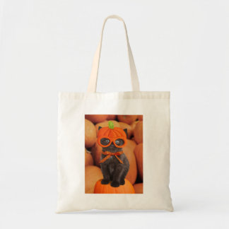 Pumpkin Kitten Trick or Treat Bag