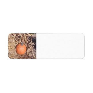 """Pumpkin"" Label Return Address Label"
