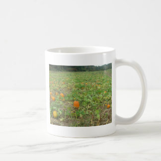 Pumpkin patch classic white coffee mug