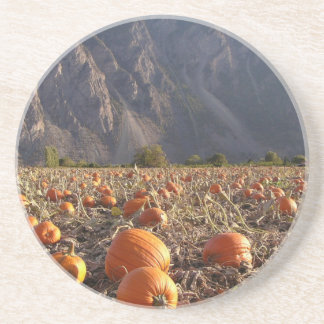 Pumpkin Patch Coaster