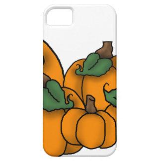 pumpkin patch iPhone 5 cases