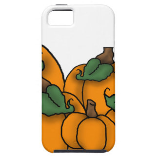 pumpkin patch iPhone 5 covers