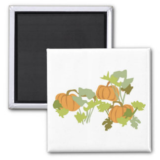 Pumpkin Patch Magnet